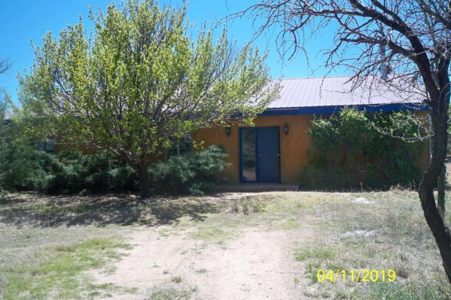 14650 E Fish Canyon Road, Sonoita, AZ 85637 (#21910487) :: Long Realty - The Vallee Gold Team