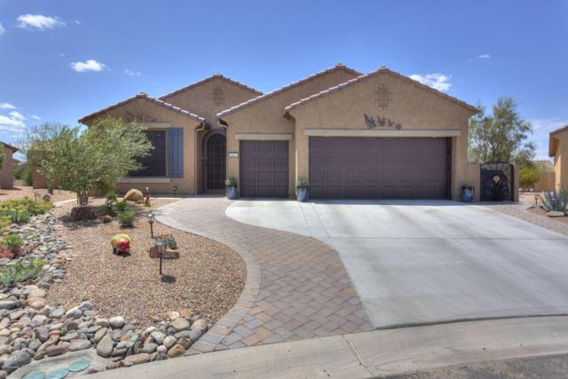 608 N Thunderchief Court, Green Valley, AZ 85614 (#21910548) :: Long Realty - The Vallee Gold Team