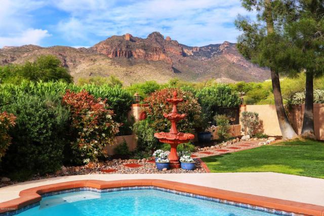 6961 N Solaz Segundo, Tucson, AZ 85718 (#21910555) :: Long Realty - The Vallee Gold Team