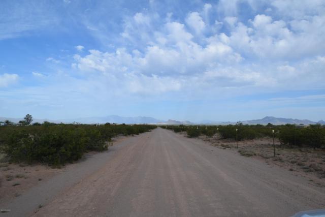 18500 W Mcclean Road, Marana, AZ 85653 (#21910566) :: Long Realty - The Vallee Gold Team