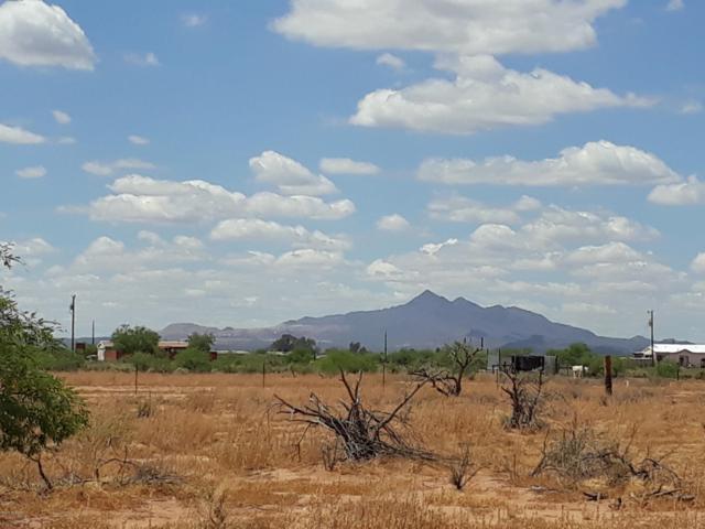 6471 N Nelson Quihuis Road, Marana, AZ 85653 (#21910584) :: Long Realty - The Vallee Gold Team
