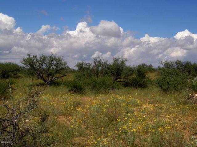 TBD S Covered Wagon Road #71, Willcox, AZ 85643 (#21910591) :: The Josh Berkley Team