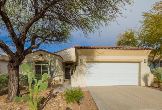 1228 S Desert Vista Drive, Tucson, AZ 85748 (#21910673) :: The Josh Berkley Team
