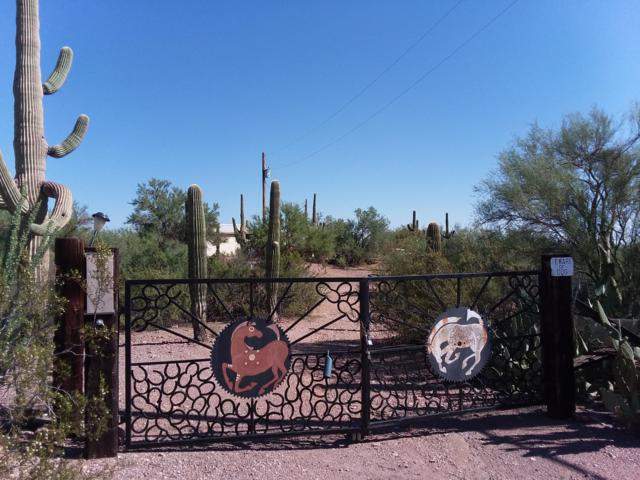 20700 W Mullins Lane, Marana, AZ 85653 (#21910698) :: Gateway Partners | Realty Executives Tucson Elite