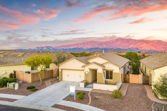 13360 N Atalaya Way, Oro Valley, AZ 85755 (#21910709) :: Long Realty Company