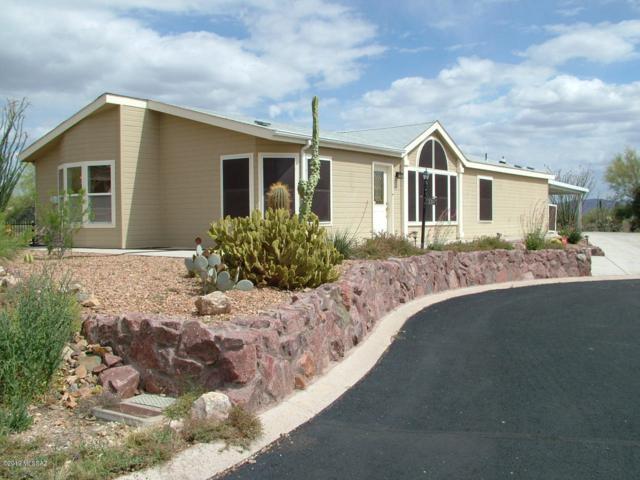 3397 S Spectrum Avenue, Tucson, AZ 85735 (#21910738) :: Long Realty Company