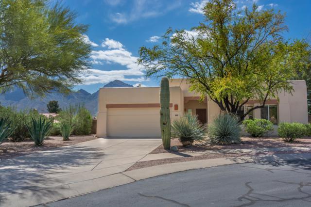 391 W Ajax Peak Road, Oro Valley, AZ 85737 (#21910746) :: Gateway Partners | Realty Executives Tucson Elite