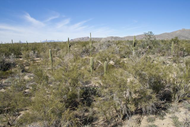 6162 W Flying Quail Court #19, Marana, AZ 85658 (#21910802) :: Gateway Partners | Realty Executives Tucson Elite