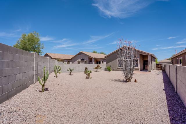 15094 S Theodore Roosevelt Way, Sahuarita, AZ 85629 (#21910891) :: Long Realty Company