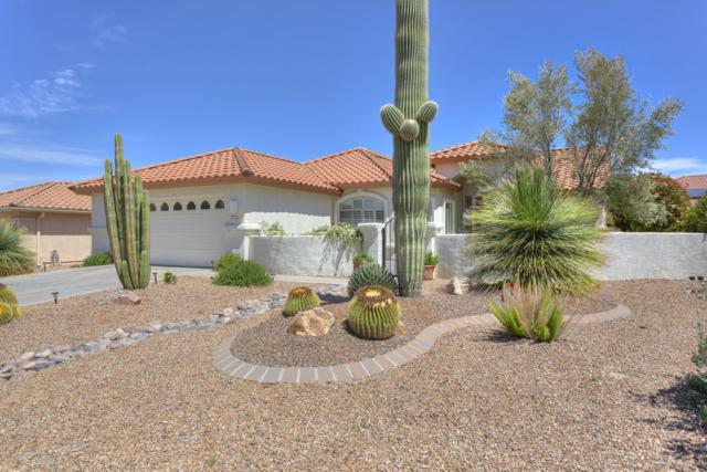 2321 E Bluejay Bluff Lane, Green Valley, AZ 85614 (#21910946) :: Gateway Partners | Realty Executives Tucson Elite