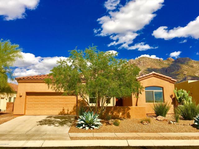 9566 N Placita Roca De Bronce, Tucson, AZ 85704 (#21911196) :: Long Realty Company
