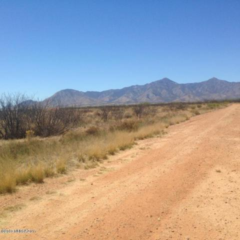 12 Acres S Windsock Road, Hereford, AZ 85615 (#21911396) :: Long Realty - The Vallee Gold Team