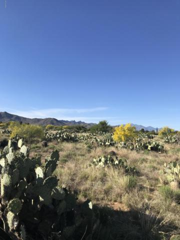 106 S Richmond Drive #67, Corona de Tucson, AZ 85641 (MLS #21911561) :: The Property Partners at eXp Realty