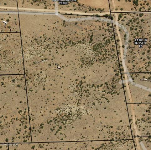 14001 W Jalisco #1, Arivaca, AZ 85601 (#21911870) :: Long Realty - The Vallee Gold Team