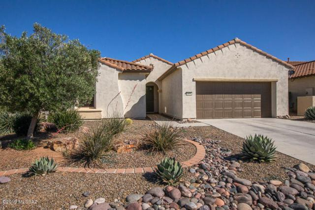 2479 E Skywalker Way, Green Valley, AZ 85614 (#21912226) :: The Josh Berkley Team