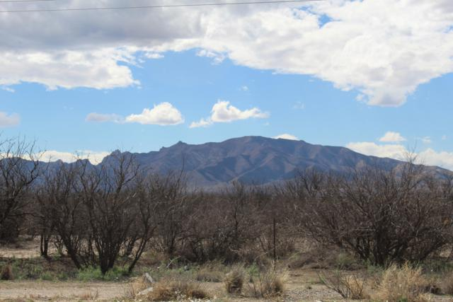TBD Hwy 191 306&307, Cochise, AZ 85606 (#21912378) :: The Local Real Estate Group | Realty Executives