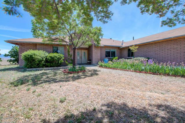 1829 Duquesne Road, Patagonia, AZ 85624 (#21912559) :: Long Realty - The Vallee Gold Team