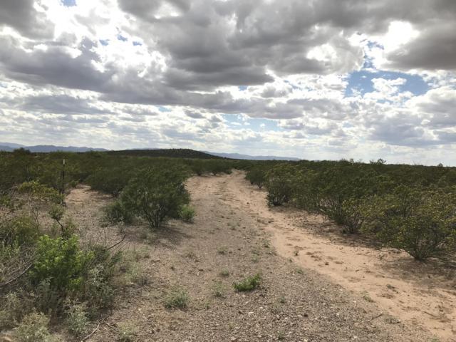 Tbd 17 Ac N Leslie Canyon Road 34+, Douglas, AZ 85607 (#21912578) :: The Local Real Estate Group | Realty Executives