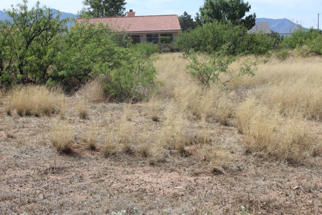 E Christmas Tree Lane #66, Pearce, AZ 85625 (#21912601) :: Long Realty Company