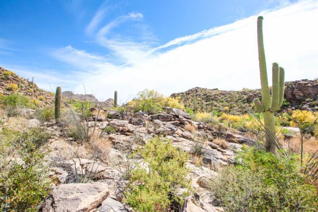 4520 W Horizon Ridge Drive #262, Marana, AZ 85658 (#21912810) :: Luxury Group - Realty Executives Tucson Elite