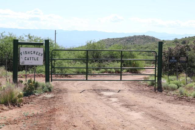 80955 E Rio Del Oro Road E, Oracle, AZ 85623 (#21912895) :: Gateway Partners | Realty Executives Tucson Elite