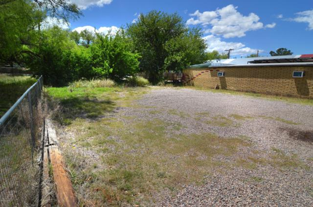 273 Mckeown Avenue Lot 10, Patagonia, AZ 85624 (MLS #21912985) :: The Luna Team