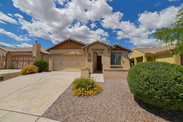 1228 W Versilia Drive, Oro Valley, AZ 85755 (#21913085) :: Long Realty - The Vallee Gold Team