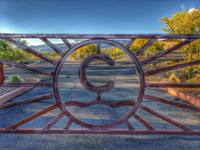 8450 S Triangle R Ranch Place #282, Vail, AZ 85641 (#21913095) :: Long Realty Company