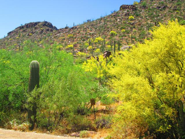 14133 N Horizon View Lane #193, Marana, AZ 85658 (#21913212) :: Luxury Group - Realty Executives Tucson Elite