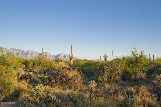 1197 W Tortolita Mountain Circle #188, Oro Valley, AZ 85755 (#21913251) :: Long Realty Company