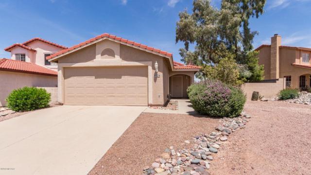 9579 N Albatross Drive, Tucson, AZ 85742 (#21913257) :: The Josh Berkley Team