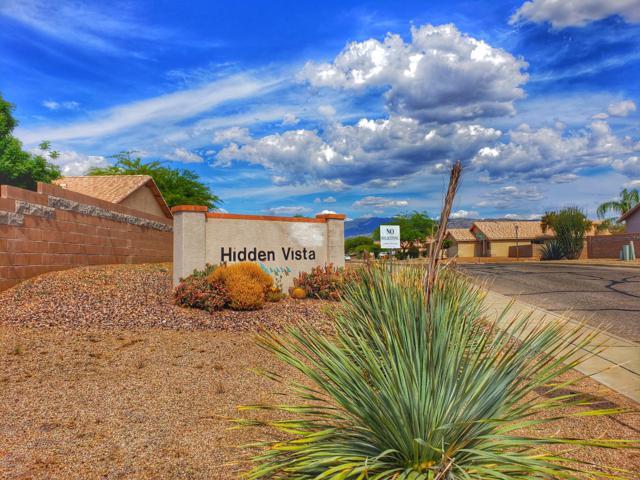 9601 E Catalina Hills Road, Tucson, AZ 85748 (#21913290) :: The Josh Berkley Team