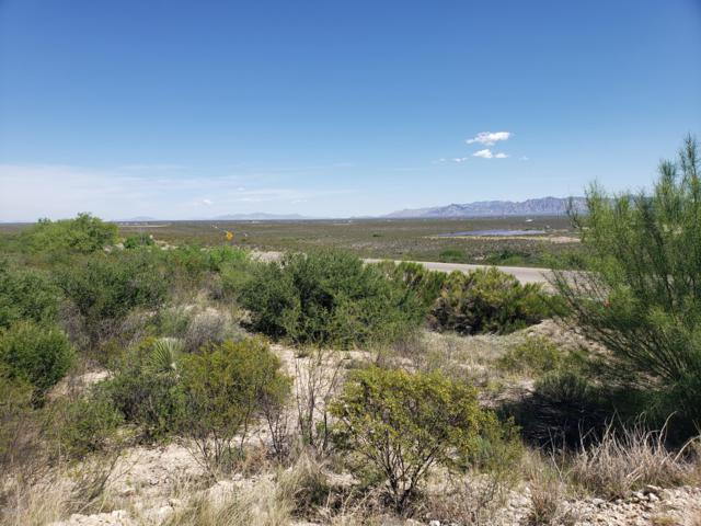 Highway 80, Tombstone, AZ 85638 (#21913352) :: Long Realty - The Vallee Gold Team