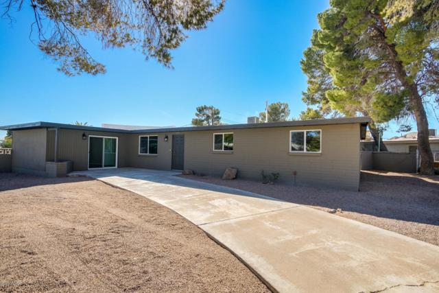 2551 W Mario Place, Tucson, AZ 85746 (#21913375) :: Long Realty - The Vallee Gold Team