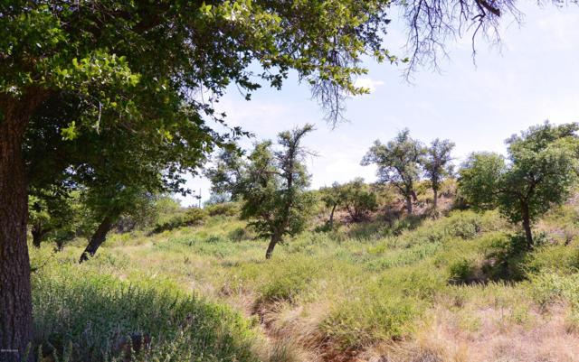 6 ac W Oak Hills Drive, Oracle, AZ 85623 (#21913416) :: Long Realty - The Vallee Gold Team
