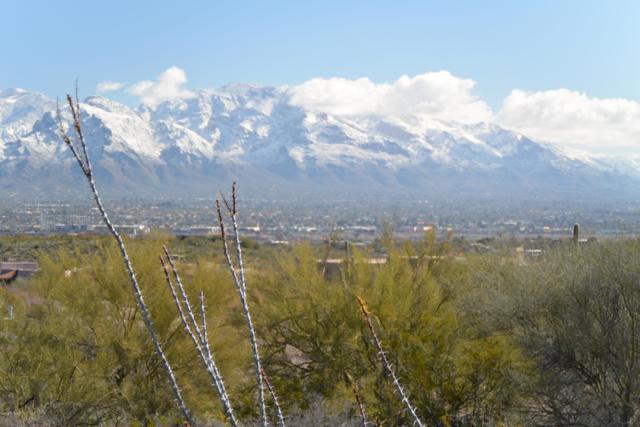 5835 N Abington Road #119, Tucson, AZ 85743 (#21913457) :: The Josh Berkley Team