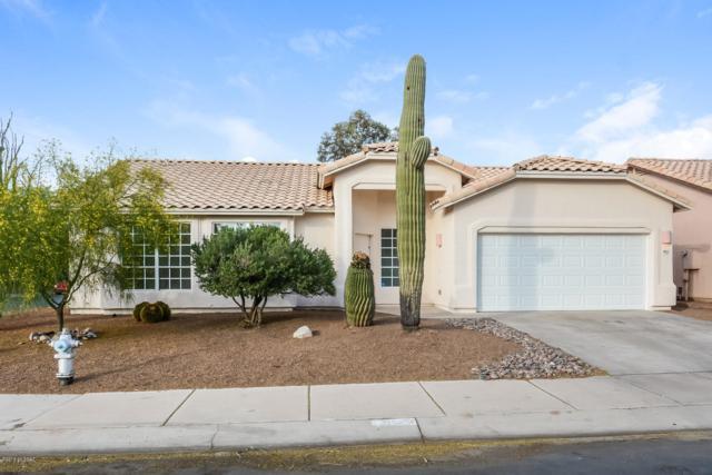 9012 N Willeta Drive, Tucson, AZ 85743 (#21913487) :: The Josh Berkley Team