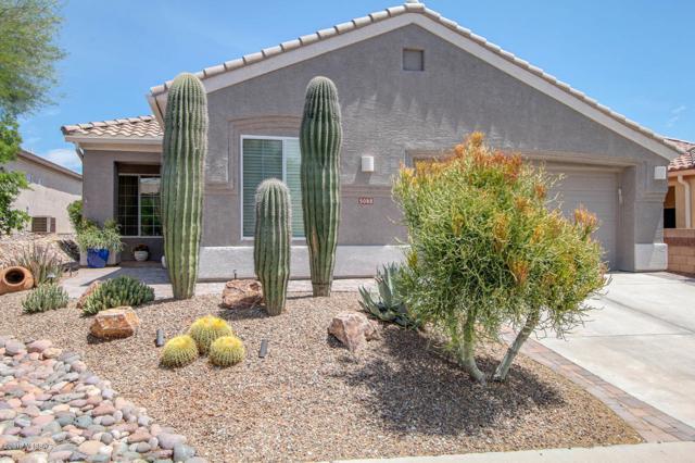 5088 W Desert Eagle Circle, Marana, AZ 85658 (#21913504) :: The Josh Berkley Team