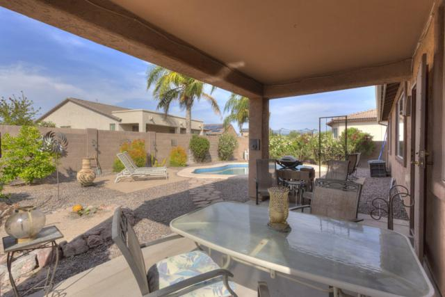 11264 W Ruddy Drive, Marana, AZ 85653 (#21913558) :: The Josh Berkley Team