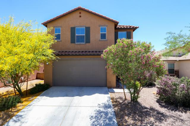 9503 Crowley Brothers Drive, Tucson, AZ 85747 (#21913560) :: The Josh Berkley Team