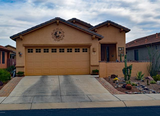 480 W Bazille Way, Green Valley, AZ 85614 (#21913594) :: Long Realty Company