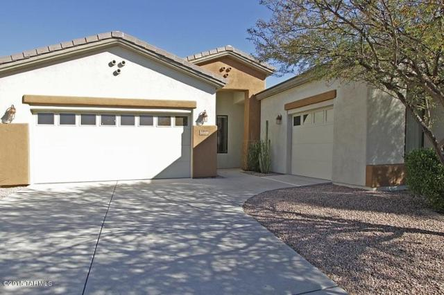 4698 W Cholla Bluff Drive, Marana, AZ 85658 (#21913624) :: Luxury Group - Realty Executives Tucson Elite