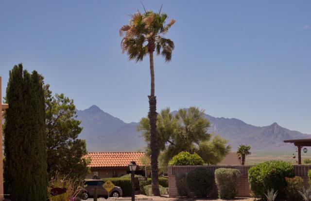 1080 W Camino Velasquez, Green Valley, AZ 85622 (#21913774) :: Long Realty Company