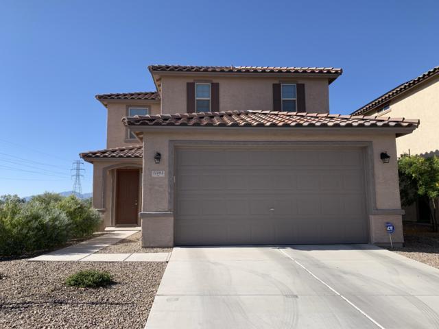 11105 E Vail Vista Court, Tucson, AZ 85747 (#21913776) :: Long Realty Company