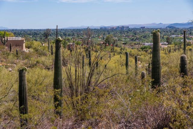 0000 N La Lomita #1, Tucson, AZ 85718 (#21913799) :: Long Realty Company