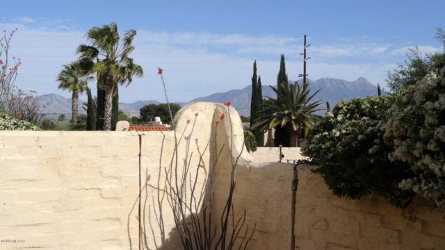 728 W Calle Del Regalo, Green Valley, AZ 85614 (#21913836) :: Long Realty Company