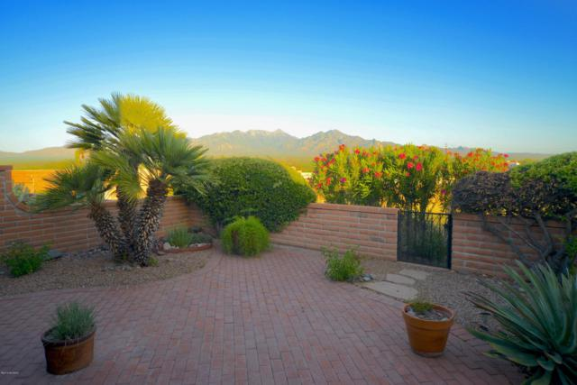 1569 Via De La Gloria, Green Valley, AZ 85622 (#21913848) :: Long Realty Company