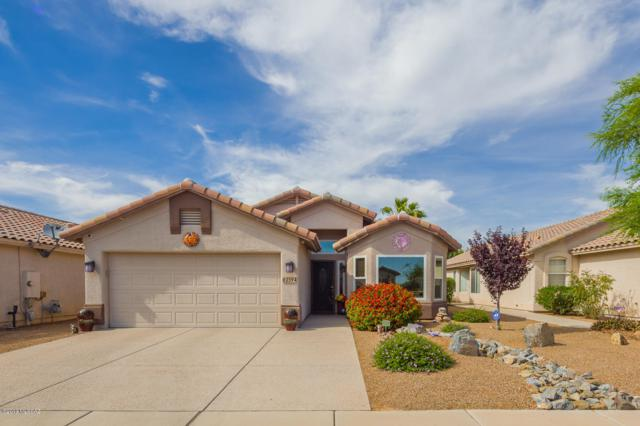 2594 W Summits End Court, Tucson, AZ 85742 (MLS #21913875) :: The Property Partners at eXp Realty