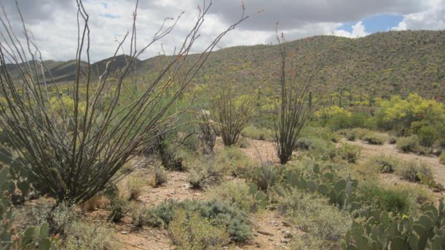 000 E Powerline Road, Marana, AZ 85658 (MLS #21913893) :: The Property Partners at eXp Realty