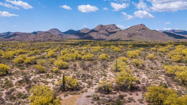 4222 W Butterfly Mountain Drive, Marana, AZ 85658 (MLS #21913900) :: The Property Partners at eXp Realty